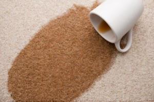 turner valler carpet cleaning